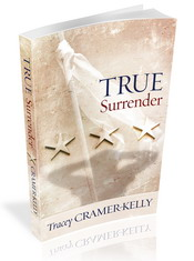 Veteran's Day Reflections – and True Surrender Military Romance for Under a Dollar