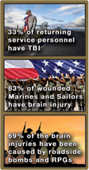 "Public Service as ""Therapy"" for PTSD"